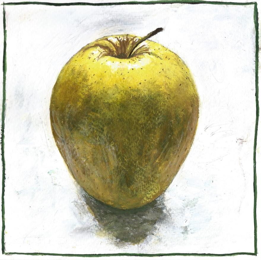 apple 6x6