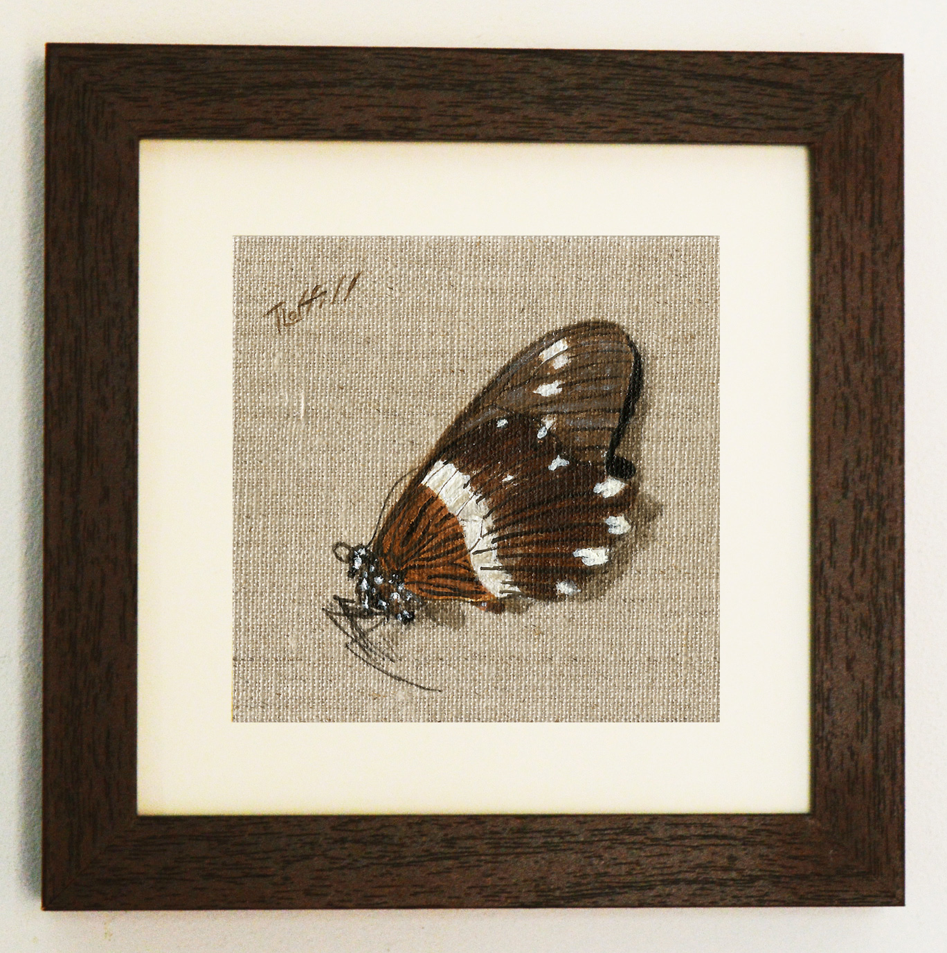 butterflyframed6