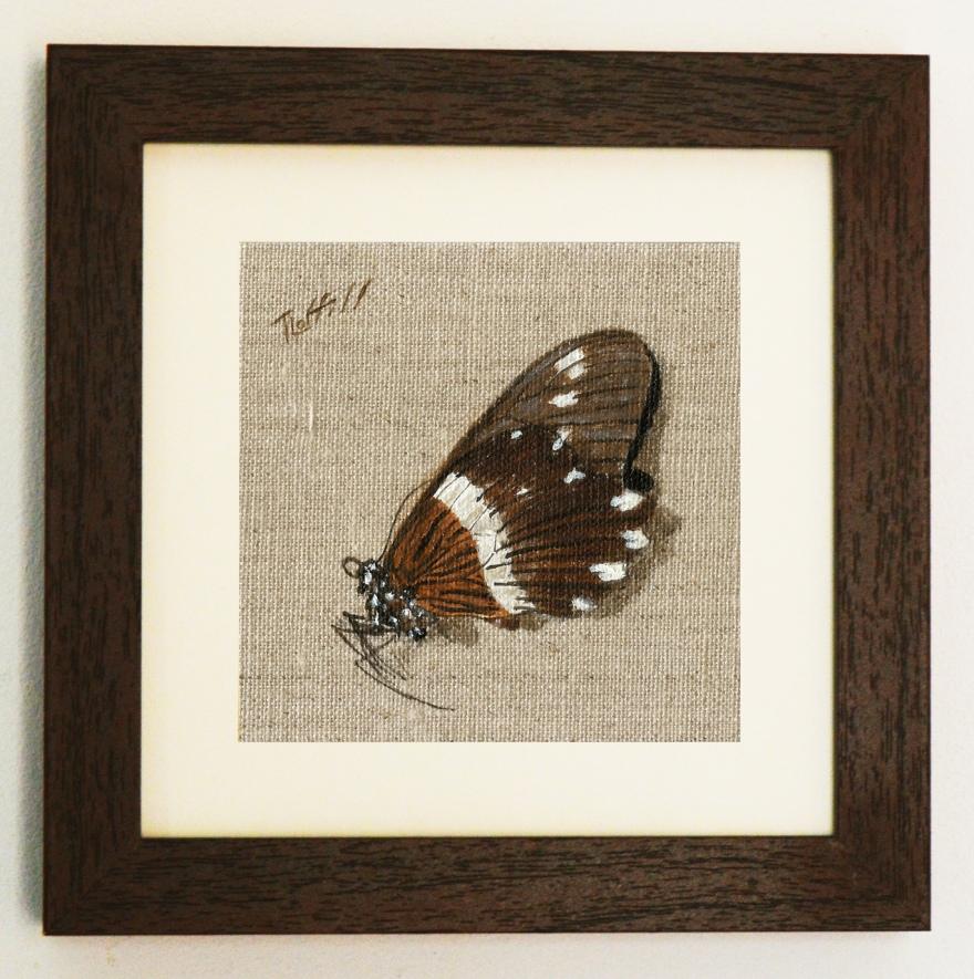 butterflyframed6